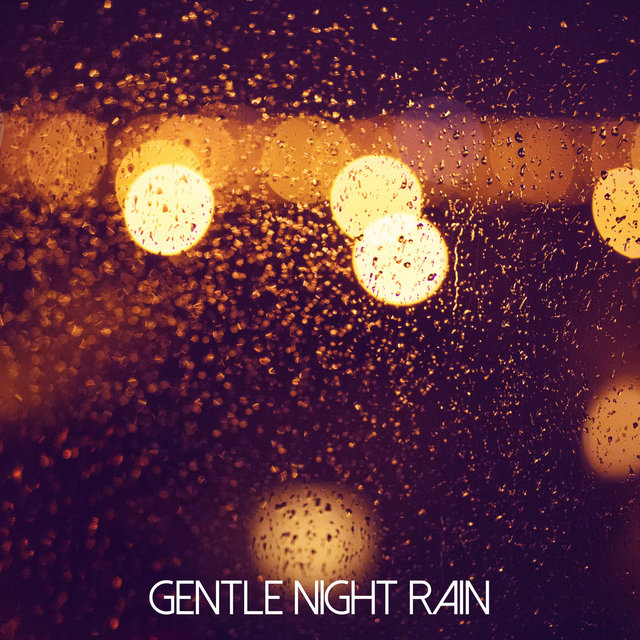 Gentle Night Rain