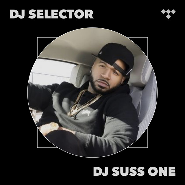DJ Selector: The Feature Presentation Vol. 13