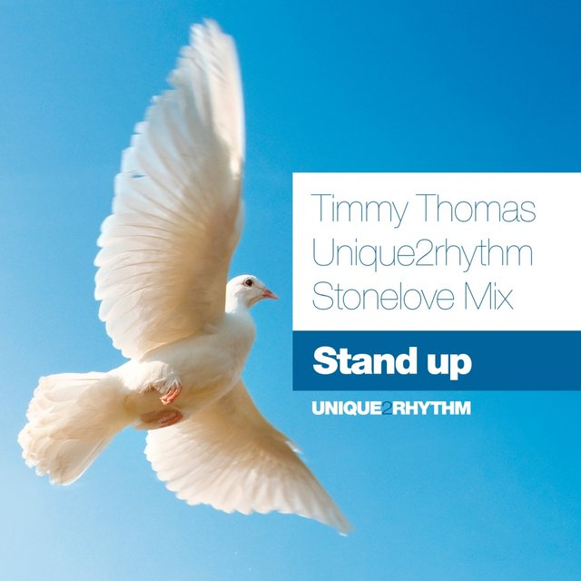 Stand Up (Unique2Rhythm Stonelove Mix)