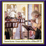 Concerto for Flute & Viola in D Minor, GWV 725: II. Vivace (Live)
