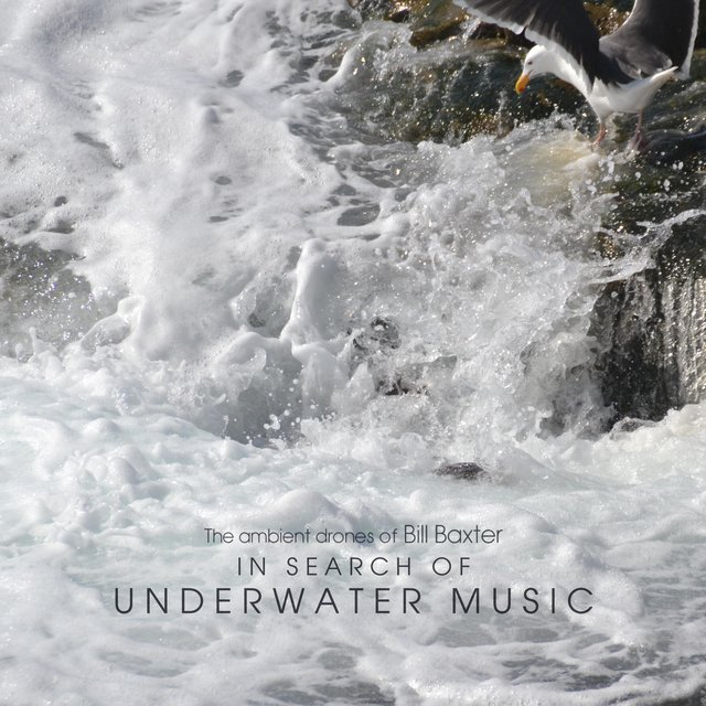 In Search of Underwater Music