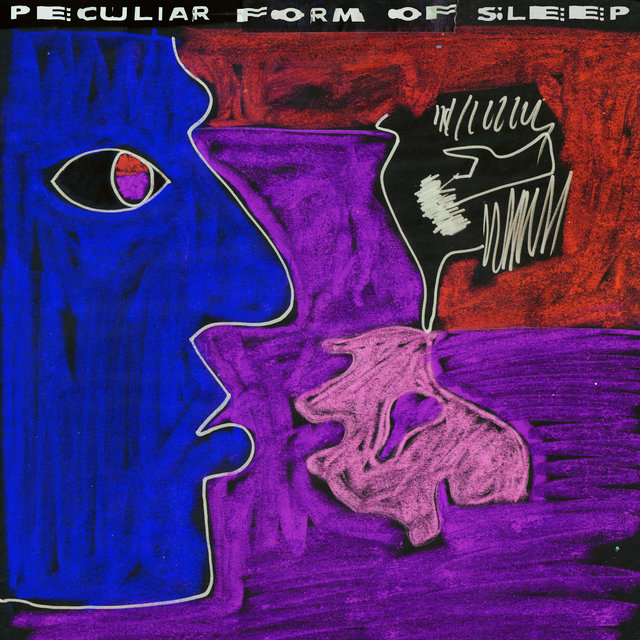 Peculiar Form of Sleep