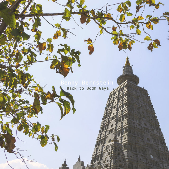 Back to Bodh Gaya