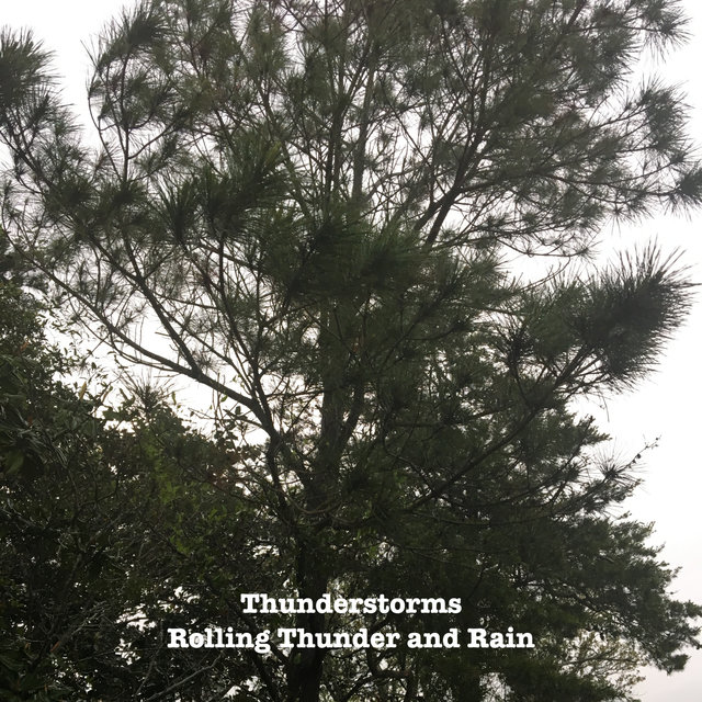 Rolling Thunder And Rain