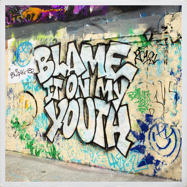 Blame It On My Youth (Radio Edit)