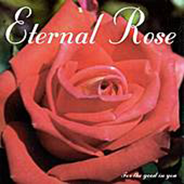 Eternal Rose
