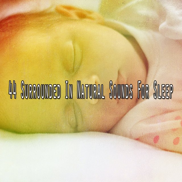 44 Surrounded in Natural Sounds for Sleep