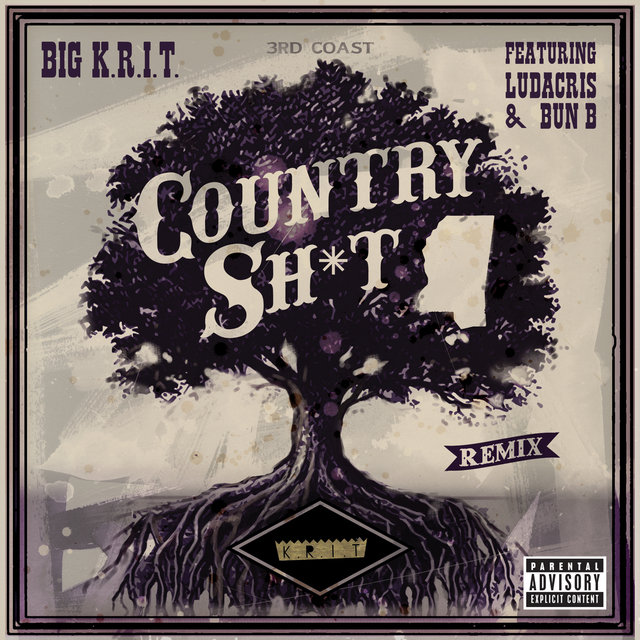 Country Sh*t (Remix)