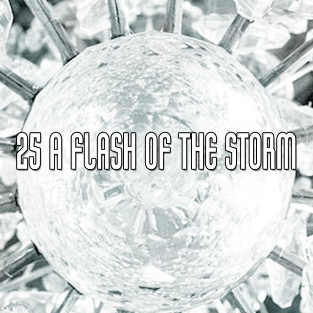 25 A Flash of the Storm