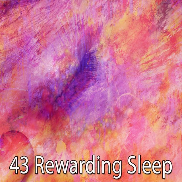 43 Rewarding Sleep