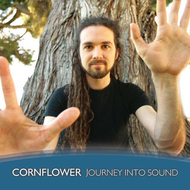 Journey into Sound