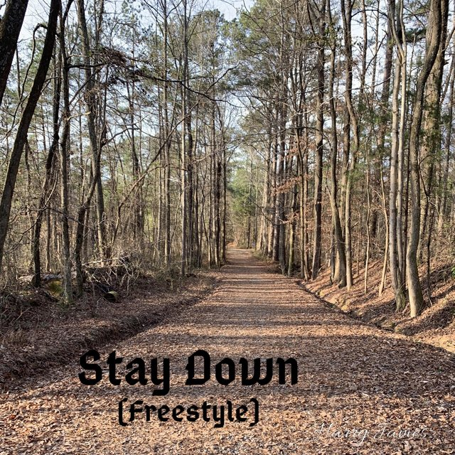 Stay Down (Freestyle)