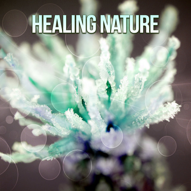 Healing Nature – Soothing Nature Sounds, Ultimate Relaxation, Deep Meditation