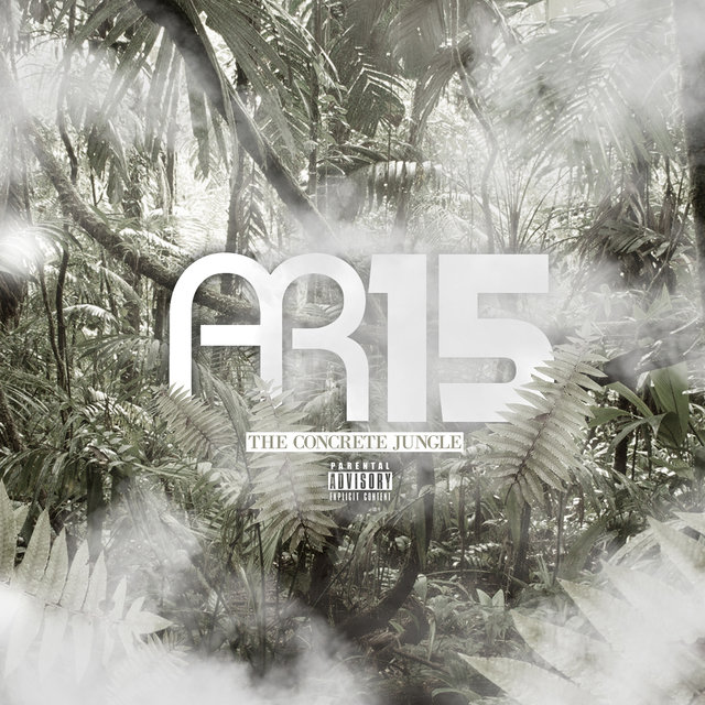 AR15 - Concrete Jungle