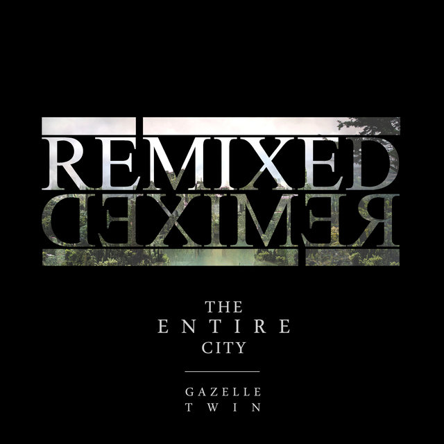 The Entire City Remixed