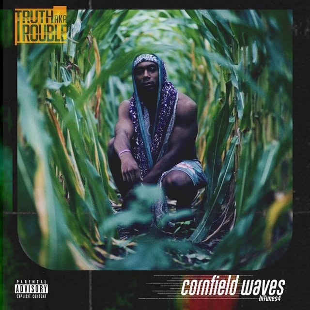 Cornfield Waves