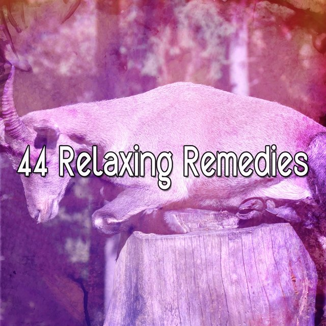 44 Relaxing Remedies