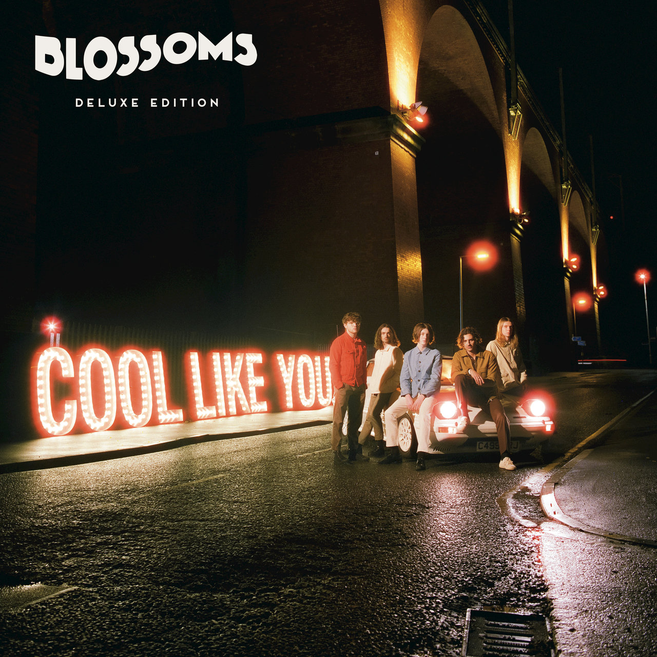 Cool Like You (Deluxe)