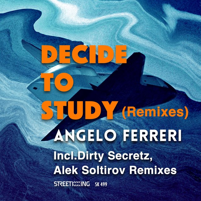 Decide To Study (Remixes)