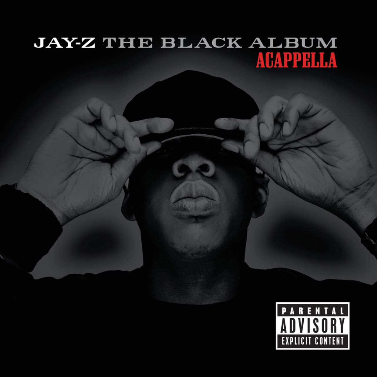 Tidal listen to the blueprint 2 the gift the curse on tidal the black album acappella malvernweather Images