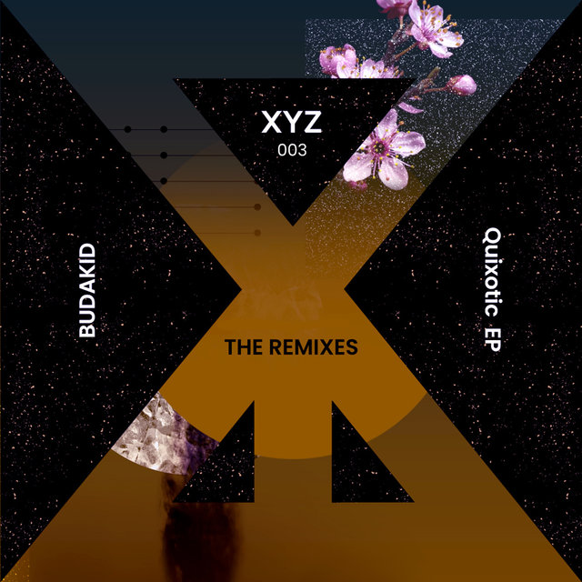 Quixotic [The Remixes]