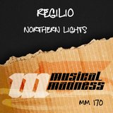 Northern Lights  (Instrumental Mix)