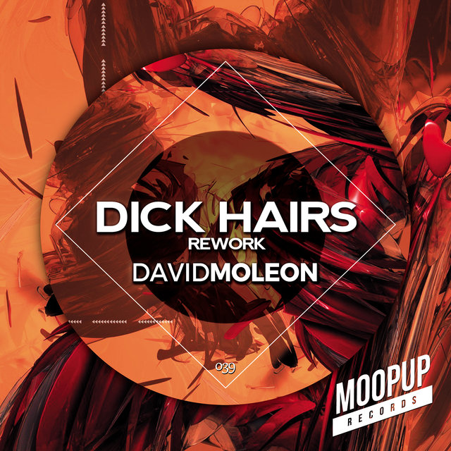 DICK HAIRS rework