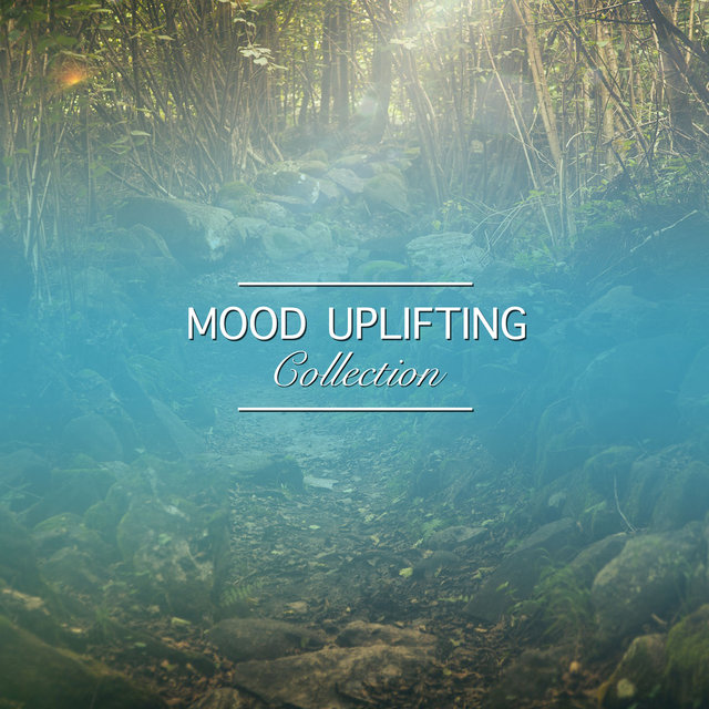 #16 Mood Uplifting Collection for Ultimate Spa Experience