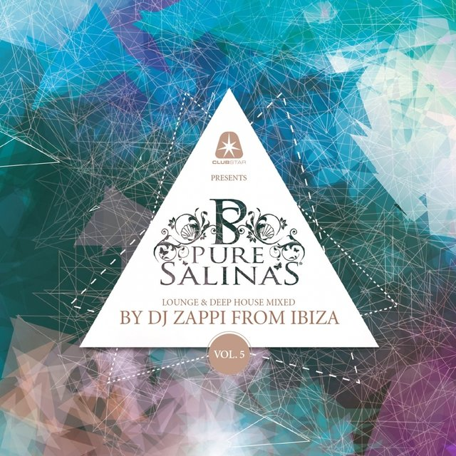 Pure Salinas, Vol. 5 (Compiled by DJ Zappi)