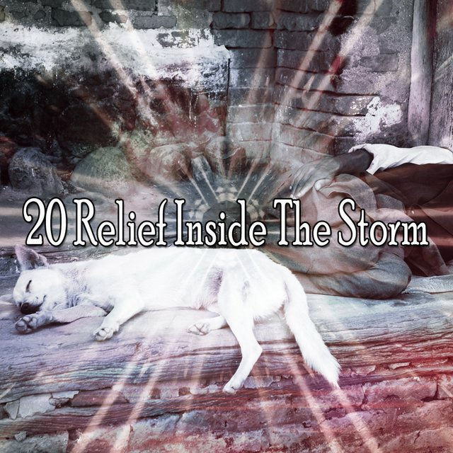 20 Relief Inside the Storm