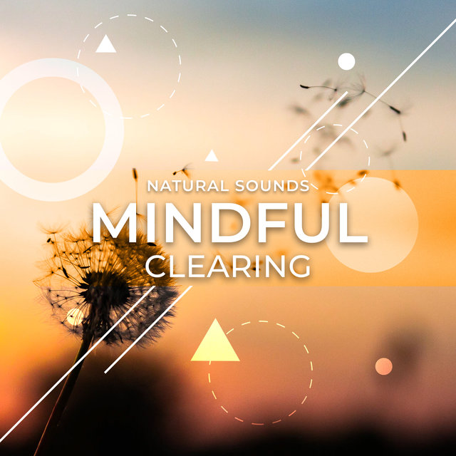Mindful Clearing