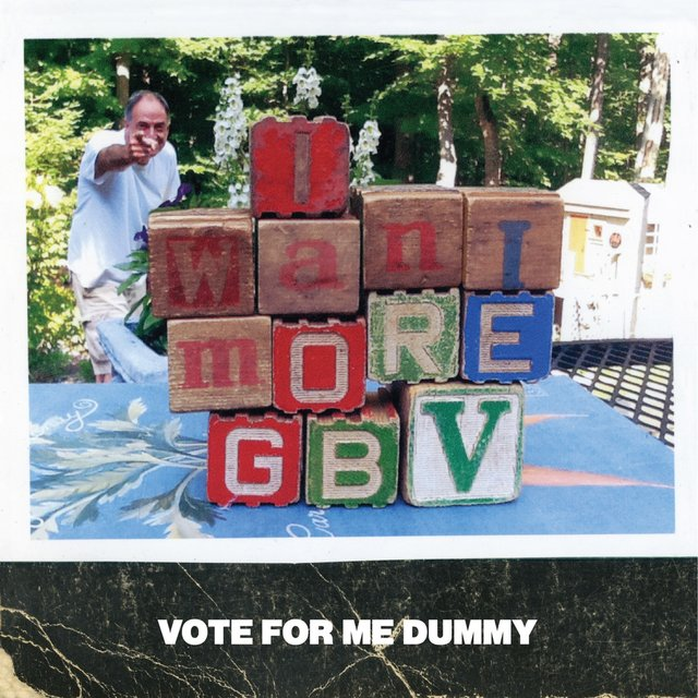 Vote for Me Dummy