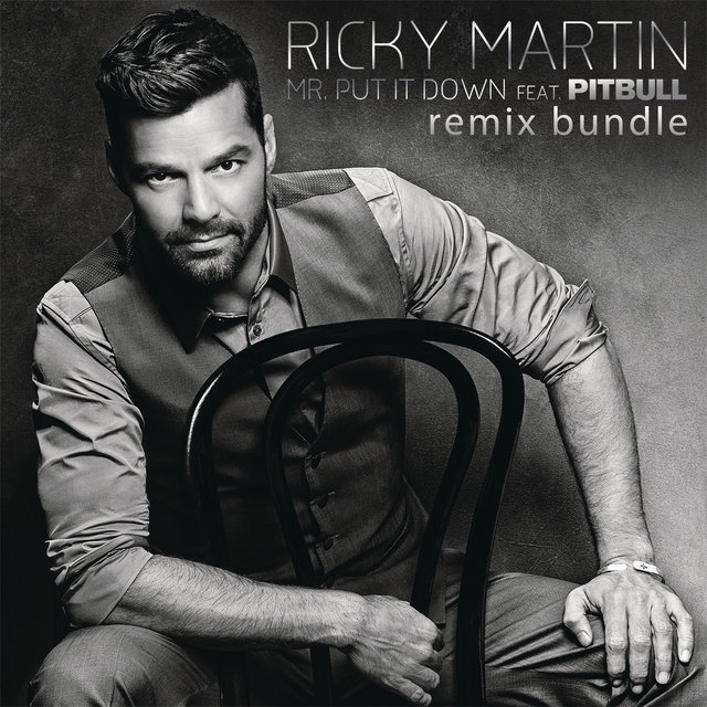 Mr. Put It Down (Remixes)