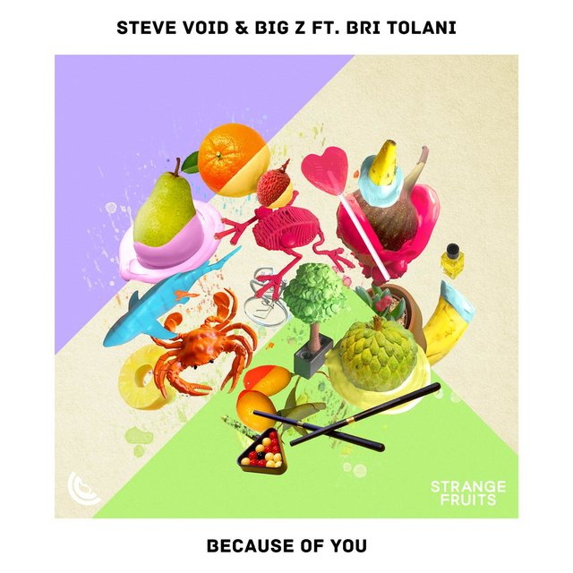 Because Of You (feat. Bri Tolani)