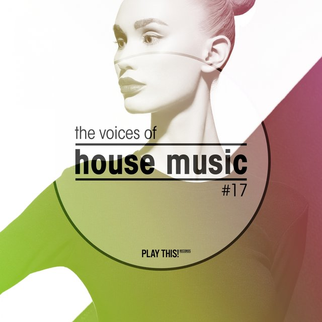 The Voices of House Music, Vol. 17