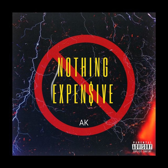 Nothing Expensive