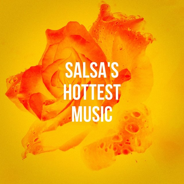 Salsa'S Hottest Music
