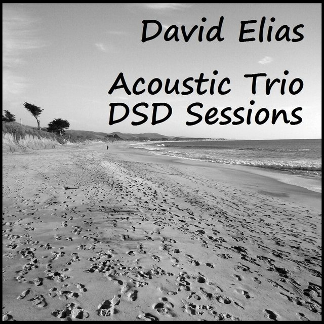Acoustic Trio: DSD Sessions