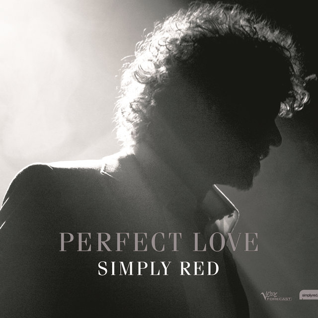 Perfect Love Remixes
