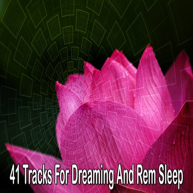 41 Tracks for Dreaming and Rem Sleep
