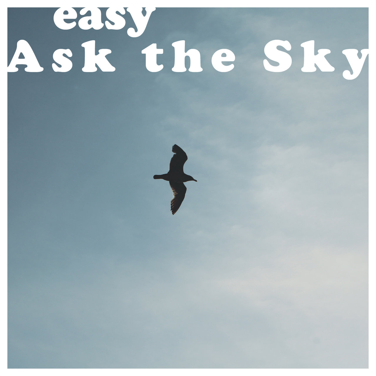 Ask the Sky