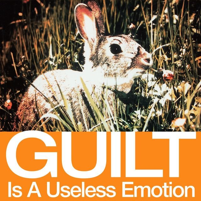 Guilt Is A Useless Emotion [US DMD]