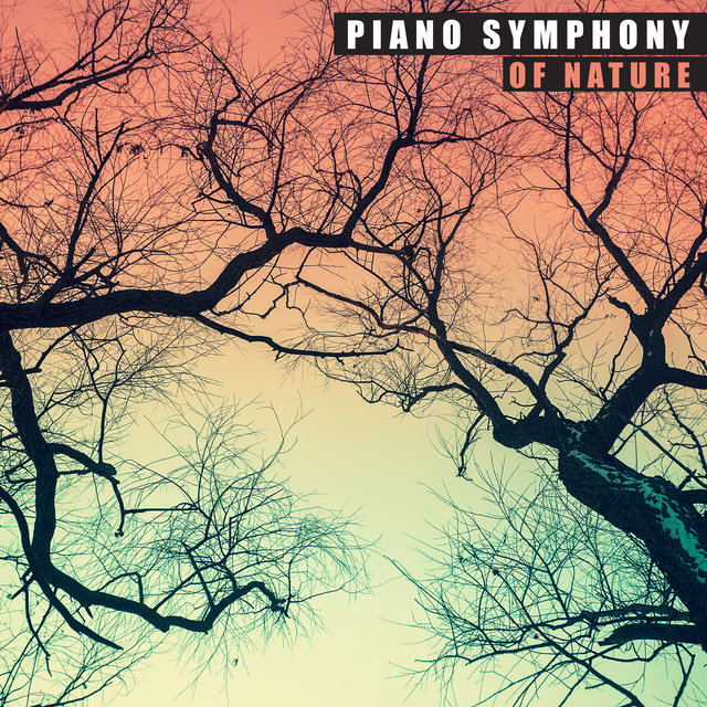 Piano Symphony of Nature: 15 Fresh New Age Songs with Nature Sounds for Total Relax, De-Stress & Calm Down After Tough Day