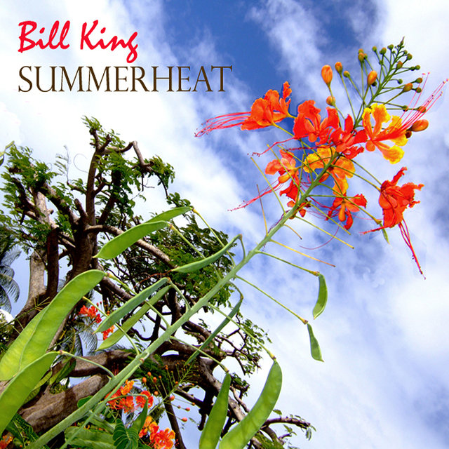 Summer Heat - The Jazz Collection, 1979-2008