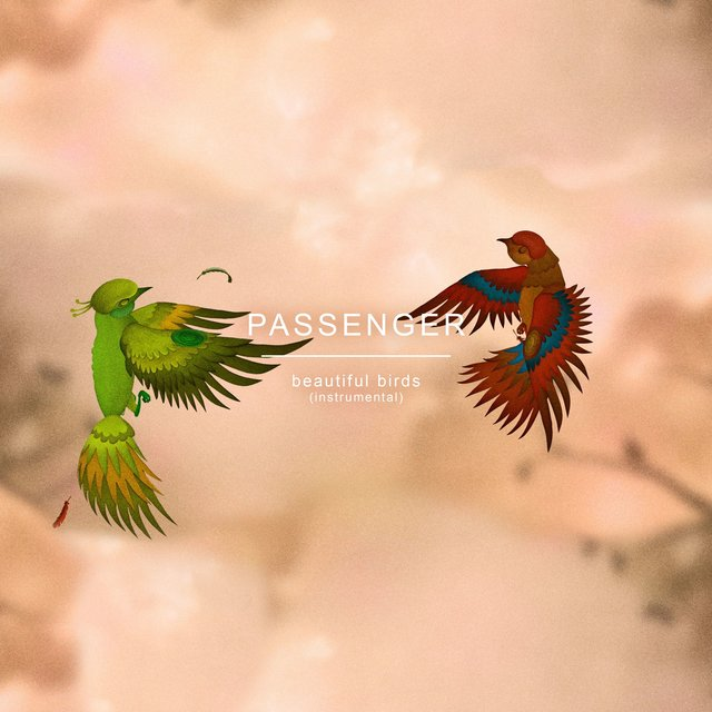 Beautiful Birds (Instrumental)