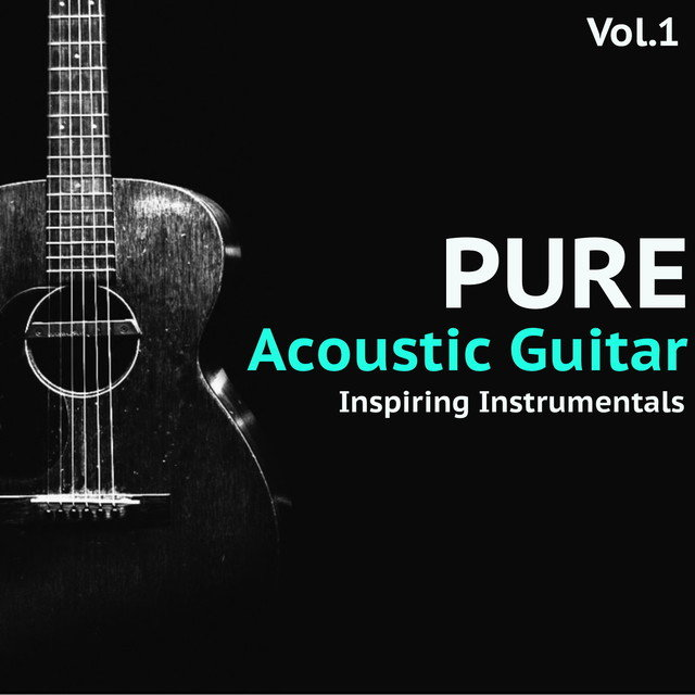 Pure Acoustic Guitar, Vol. 1