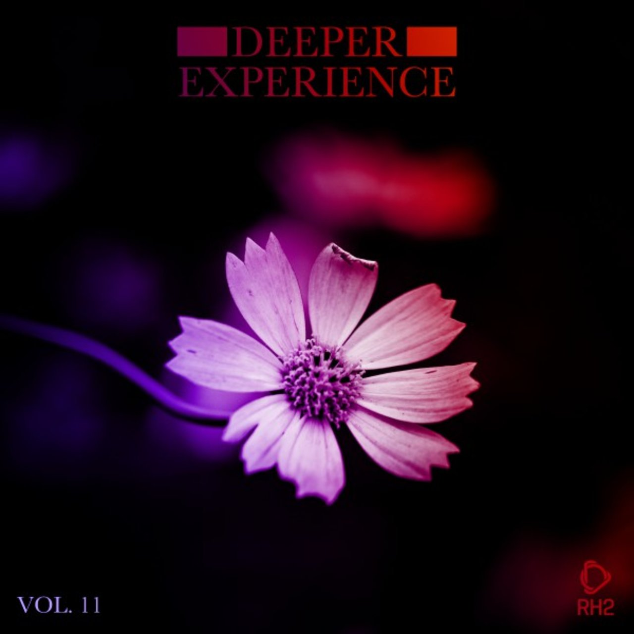 Deeper Experience, Vol. 11