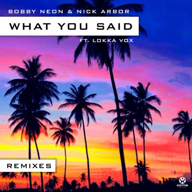 What You Said (Remixes)