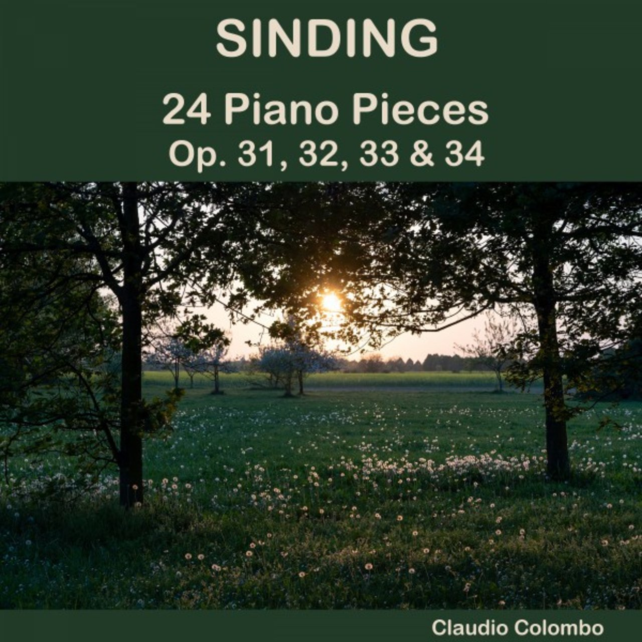 Sinding: 24 Piano Pieces, Op. 31, 32, 33 & 34