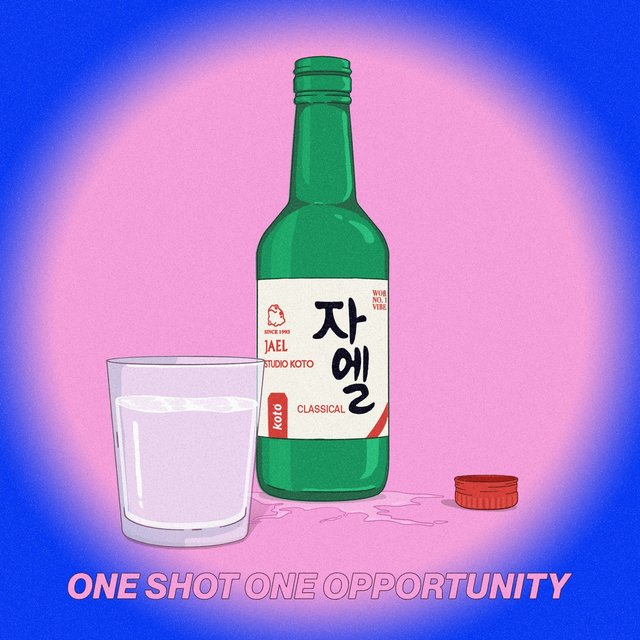 One Shot One Opportunity